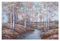 Birch Creek Fine-Art Print