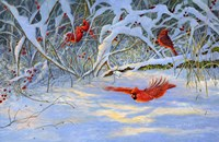 Cardinals and Berries Fine-Art Print
