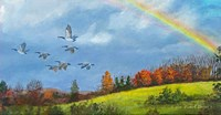 October Rainbow Fine-Art Print