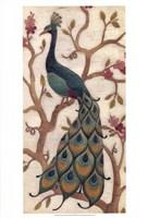 Peacock Fresco II Fine-Art Print