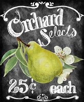 Orchard Selects Fine-Art Print