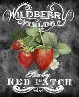 Wildberry Fields Fine-Art Print