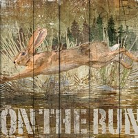 Rabbit on the Run Fine-Art Print