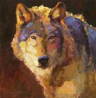 Amadeus Wolf Fine-Art Print