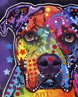 American Bulldog 3 Fine-Art Print
