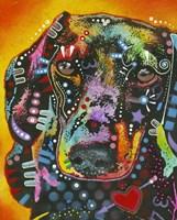Brilliant Dachshund Fine-Art Print