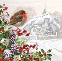 Winter Robin Fine-Art Print