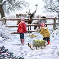Feeding Reindeer Fine-Art Print
