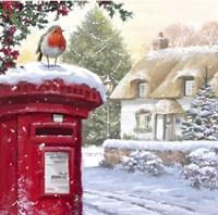 Robin On Post Box 2 Fine-Art Print