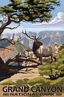 Grand Canyon Park Elk Fine-Art Print