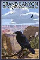 Grand Canyon National Park (crow) Fine-Art Print