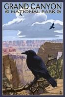 Grand Canyon National Park (crow) Fine-Art Print