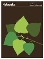 Montague State Posters - Nebraska Fine-Art Print