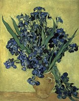 Irises(1890) Fine-Art Print