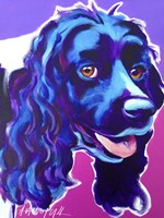 Cocker Spaniel Dixie Fine-Art Print