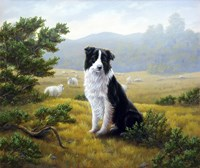 In the Glen Fine-Art Print