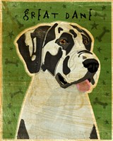 Harlequin Great Dane 2 Fine-Art Print