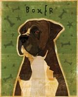 Boxer - Brindle Fine-Art Print