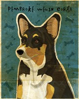 Pembroke Welsh Corgi - Tri-Color Fine-Art Print