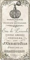 Signes Francais II Fine-Art Print