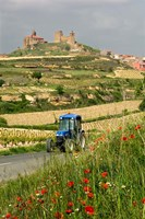 Blue tractor on rural road, San Vicente de la Sonsierra Village, La Rioja, Spain Fine-Art Print