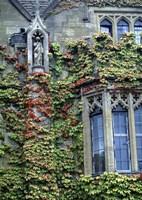 Halls of Ivy, Oxford University, England Fine-Art Print