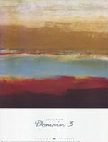 Domain 3 Fine-Art Print