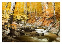 October Creek Fine-Art Print