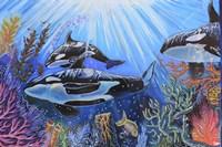 Killer Whales Fine-Art Print