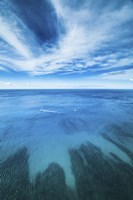Waikiki Daytime Reef Vertical Fine-Art Print