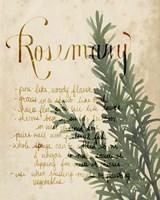 Herb Study IV Fine-Art Print