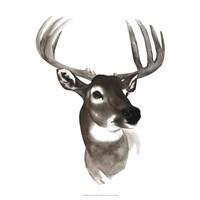 Western Animal Study VI Fine-Art Print