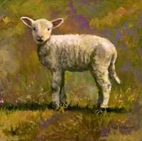Leap Year Lamb Fine-Art Print