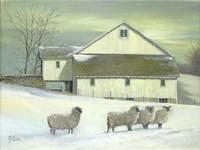 Sheep At Granough Fine-Art Print