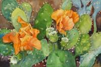 Blossoming Cactus Fine-Art Print