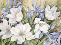 White Tulips/ Blue Iris Fine-Art Print