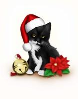 Santa Claws Fine-Art Print