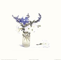 Petunias & Blue Salvia Fine-Art Print