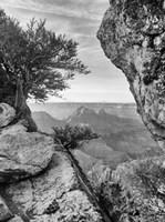 Grand Canyon 7 Fine-Art Print