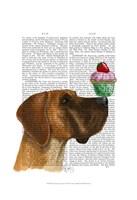 Great Dane and Cupcake Fine-Art Print