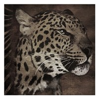 Animal Instincts Dulled Fine-Art Print