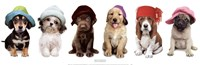 Hat Hounds Fine-Art Print