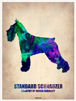 Standard Schnauzer Fine-Art Print