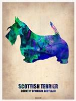 Scottish Terrier 2 Fine-Art Print
