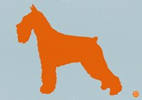 Standard Schnauzer Orange Fine-Art Print