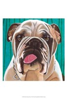 Dlynn's Dogs - Bosco Fine-Art Print