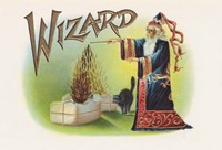 Wizard Fine-Art Print