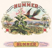 Hummer Fine-Art Print