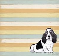 Basset Hound 1 Fine-Art Print
