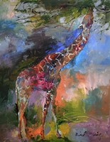 Giraffe Fine-Art Print